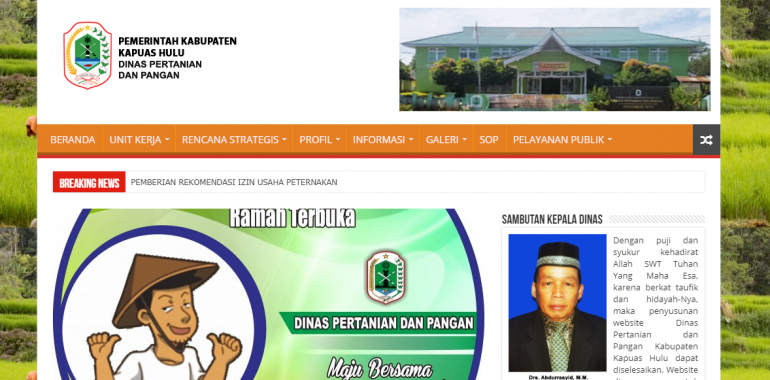 Pembuatan Website Dinas Instansi